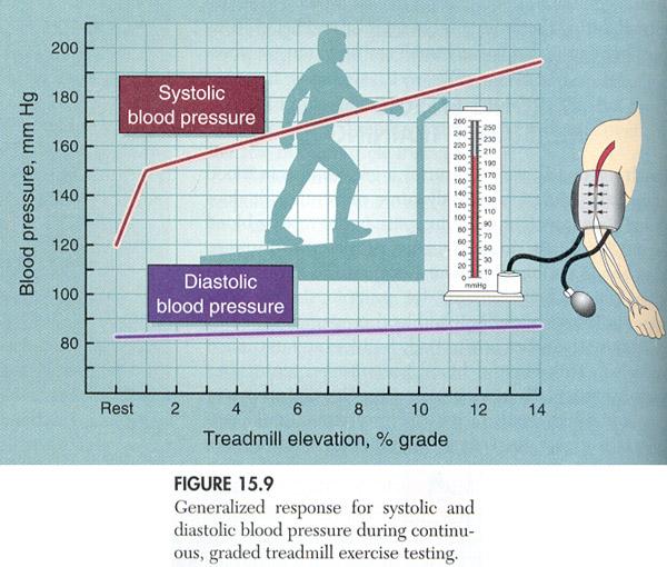 blodtryk efter motion